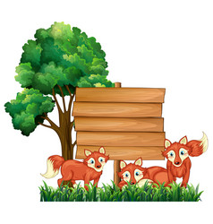 wooden signs with three foxes vector image
