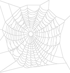Spider web or net vector image vector image