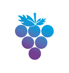 contour delicious grape organic fruit vector image