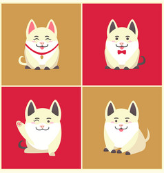 Chinese new year animal pet pig animal in collar vector
