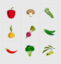 Colorful vegetable icon set on white background vector