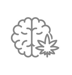 Human brain with marijuana leaf line icon vector