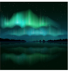 northern lights aurora borealis realistic vector image