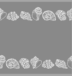 Seamless decorative border from white seashell vector
