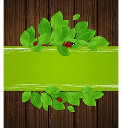 Green horizontal banner with leaves and ladybug vector image