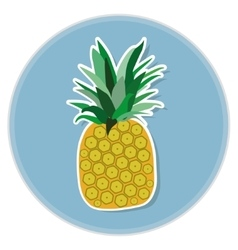 pineapple flat vector image vector image