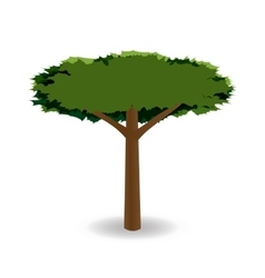 A stylized drawing of a green tree with a round vector image vector image