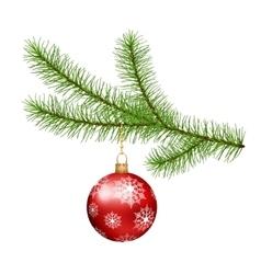 Christmas branch hanging Christmas ball vector image vector image