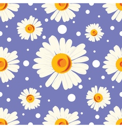 Seamless pattern with white chamomiles and dots on vector image vector image