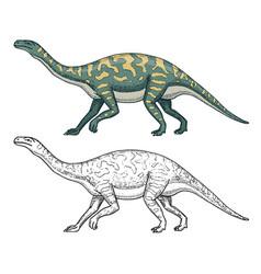 dinosaurs barosaurus apatosaurus tenontosaurus vector image vector image