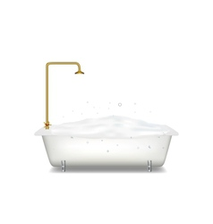 Bath with soap vector image
