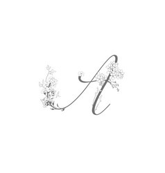 hand drawn floral a monogram and logo vector image