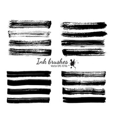 ink brushes vector image