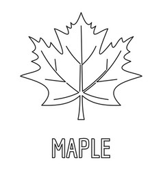 Maple leaf icon outline style vector