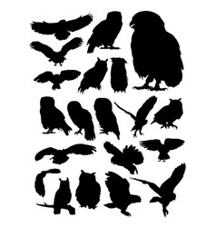 owl animal detail silhouettes vector image