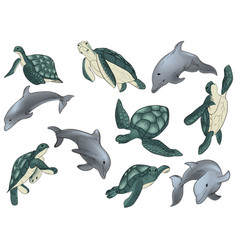 Set swimming dophins and vector