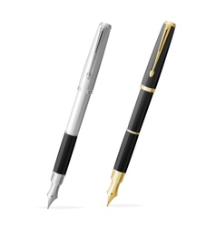 Two Fountain pens isolated gold and silver vector