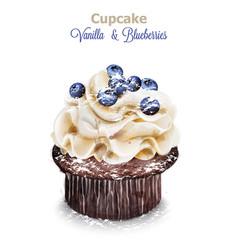 vanilla and blueberry cupcake delicious vector image