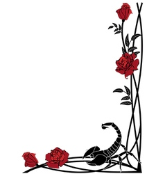 border with roses and scorpion vector image vector image