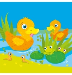 Ducks And Frogs On Pond vector