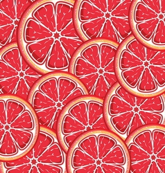 Grapefruit slices background vector image