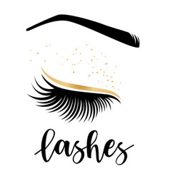 lashes vector image