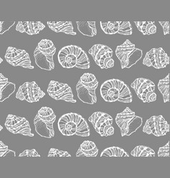 seamless pattern from white seashell vector image