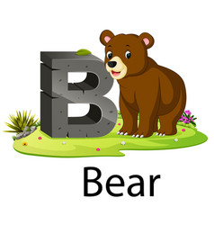 zoo animal alphabet b for bear vector image