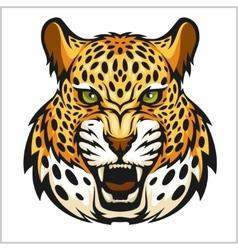 jaguar portrait Jaguars head on white vector image