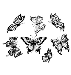 Beautiful butterflies vector