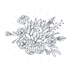 bouquet of hand drawn sketches with plants vector image