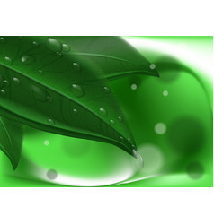 Green leavs and dew on abstract background hi res vector