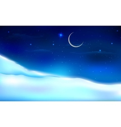Snowy Night Landscape vector image
