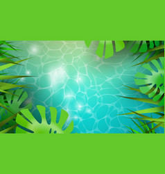 summer background template tropical plants vector image