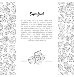 superfood banner template with place for your text vector image