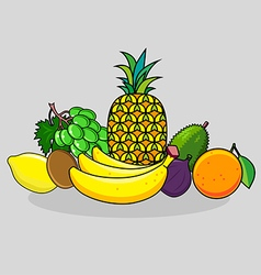 Set of citrus and tropical fruits vector image