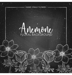 Anemone floral background on chalkboard vector