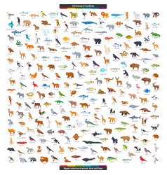 Animals world big collection vector