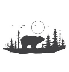 bear in forest vector image