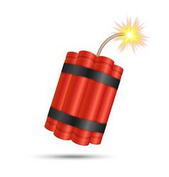 Dynamite bomb stick vector