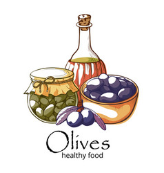 olive products banner isolated on white background vector image