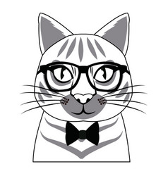 portrait of cat with glasses fashion vector image