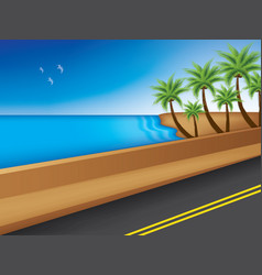 road near sea with palm trees vector image