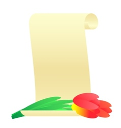 Bouquet of tulips and paper scroll vector