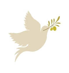 dove with olive branch icon vector image
