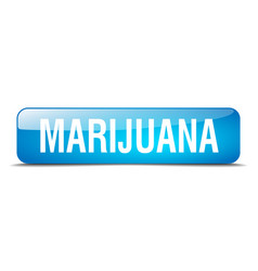 Marijuana blue square 3d realistic isolated web vector