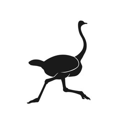 silhouette running ostrich black on white vector image