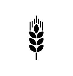 single wheat ear icon vector image