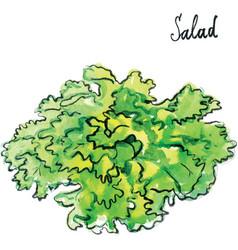 watercolor salad vector image vector image
