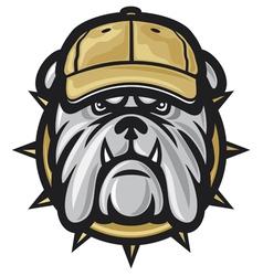Bulldog head and baseball cap vector image vector image